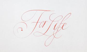За жизнь 1