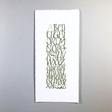Оливковые алфавиты
