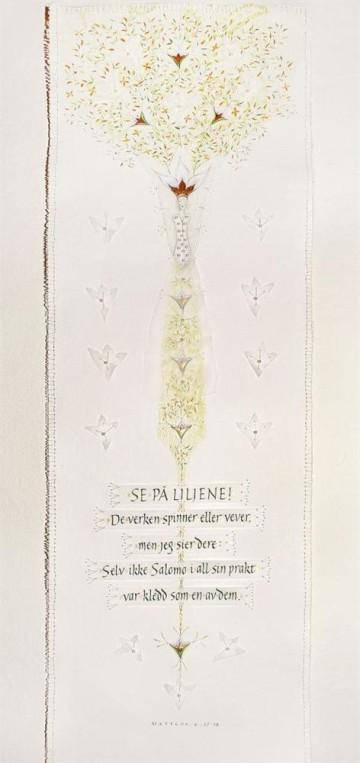 Lilies of the Field. Matthew 6: 28-29