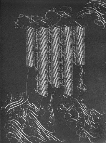 Гармонические кривые