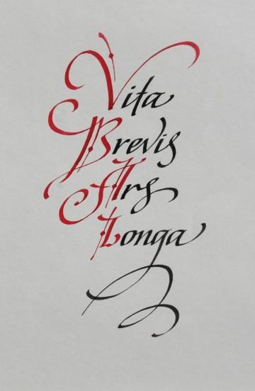 Vita Brevis Ars Longa