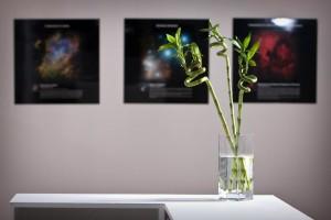 The III International Exhibition of Calligraphy. Photo report