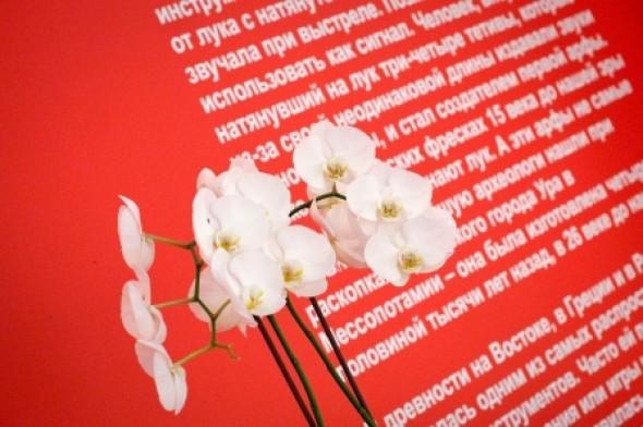 国际书法展:照片游览