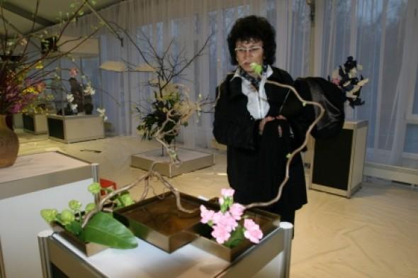 樱花节开幕式