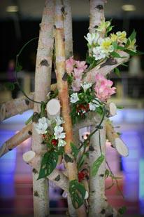 Sakura Festival, April 14—19, 2009