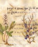 Work of Alexander Sviridov