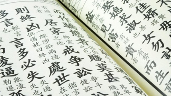 Лекция Дмитрия Худякова «Эволюция китайской письменности с древнейших времен до наших дней»