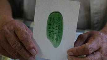 Японская каллиграфия на зернышке риса