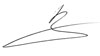 Подписи членов команды «Международной выставки каллиграфии»